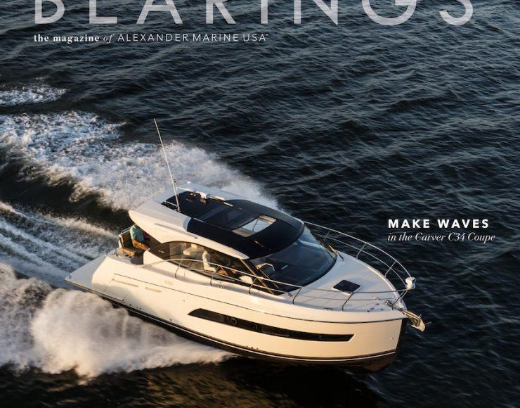 Bearings   Volume 7, Issue 3