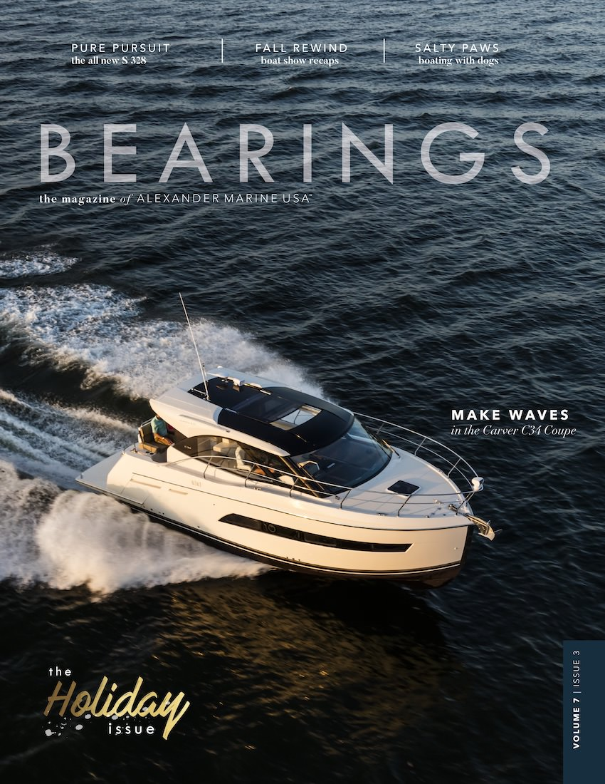 Bearings | Volume 7, Issue 3